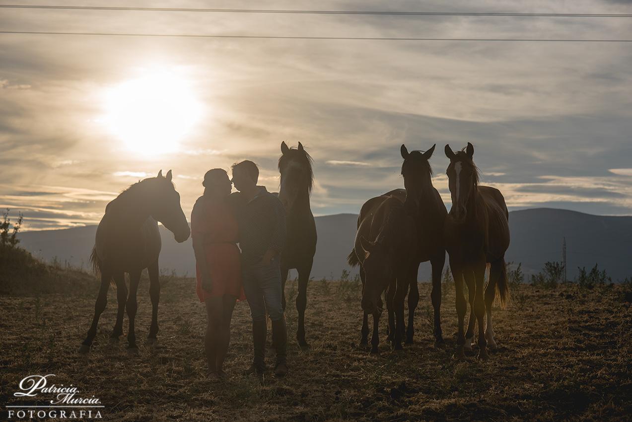 reportaje preboda en Madrid con caballos
